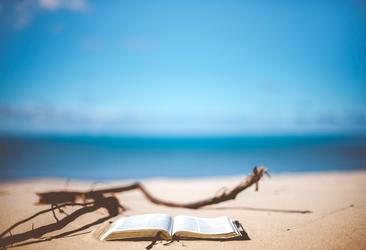 Am Strand lassen sich die Besteller von Powerfrauen noch besser lesen.