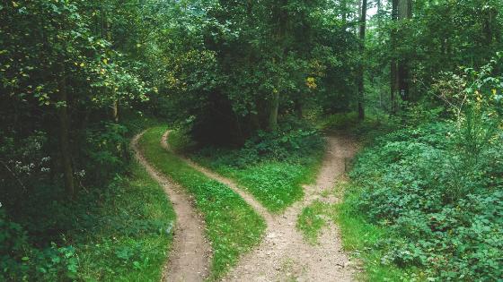 Vom Bauchgefühl leiten lassen und in den Wechseljahren neue Wege gehen
